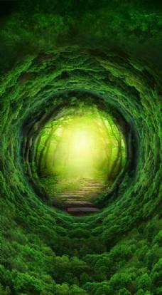 創意綠色森林H5背景