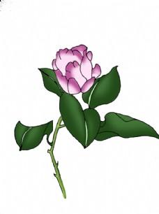 手繪紫色花朵