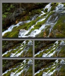 森林小溪流水视频素材