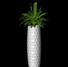 花草模型 植物模型 花卉模型