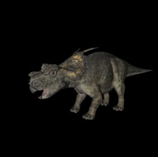恐龙c4d模型