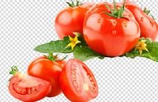 西紅柿 大西紅柿