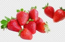 草莓 大草莓