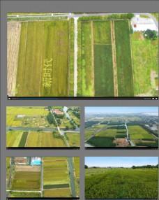 農村耕地航拍視頻素材