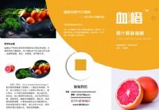 水果三折页
