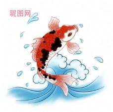 錦鯉手繪插畫