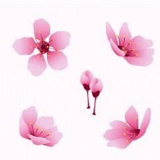 粉色桃花創意圖案