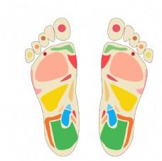 足部穴位元素