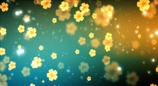 婚礼led大屏视频之黄色花朵