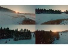 无人机航拍由下而上略过林间雪地