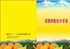 柑橘种植技术手册