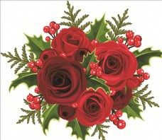 紅色美麗玫瑰