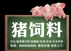 猪饲料牌子