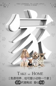 宠物领养海报