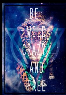 猎豹星空摄影剪切潮流艺术海报